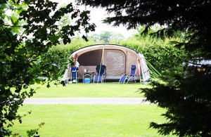 Tent at Fakenham Fairways Campsite.